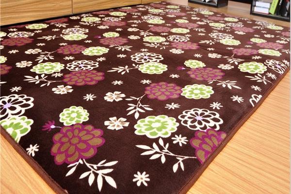 地毯  200*300cm
